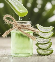All You Need To Know About Aloe Vera For Weight Loss