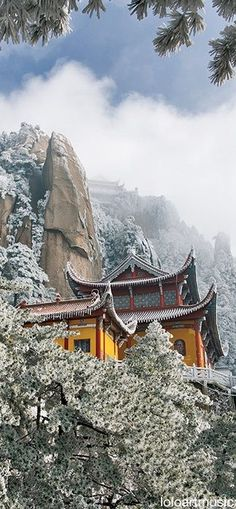 A temple in Mt Jiuhua, one of the four major Buddhast mountaints in China