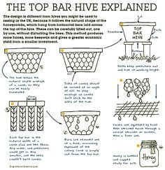 horizontal top-bar hive - Google Search