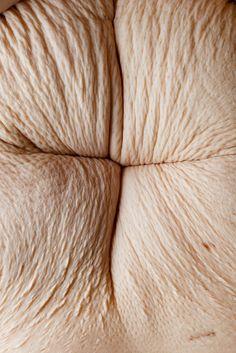 Texture : Skin / Peau, by / selon Julia Kozerski