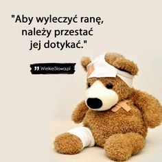 Motto, Life Is Good, Self, Teddy Bear, Motivation, Lifestyle, Anime, Life Is Beautiful, Teddy Bears