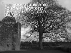 Dream Big and go for those Dreams! #adventure #dreams #roguetraveling