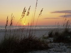 watching the sun set over the Florida gulf coast beaches