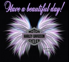 Awesome Harley davidson motorcycles photos are available on our internet site. Check it out and you will not be sorry you did. Harley Davidson Quotes, Harley Davidson Pictures, Harley Davidson Tattoos, Harley Davidson Wallpaper, Harley Davidson Night Train, Motor Harley Davidson Cycles, Harley Davidson Panhead, Harley Davidson Street Glide, Biker Quotes