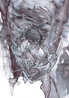 Wolverine by Carmine Di Giandomenico