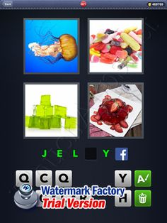 4 Pics 1 Word Answers: Level 2671