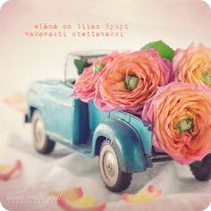 Elämä on liian lyhyt Be Kind To Yourself, Live Life, Cool Words, Anna, Messages, Thoughts, Feelings, Photography, Quotes