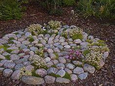 Backyard Plan, Backyard Landscaping, Landscape Elements, Green Rooms, Green Garden, Drought Tolerant, Garden Planning, Garden Inspiration, Stepping Stones