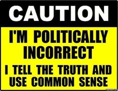 You can be frustrated by all this political correctness and be a Democrat. It doesn't automatically mean you're a Conservative or Trump supporter. We need more truth and common sense in this world. Wisdom Quotes, True Quotes, Great Quotes, Funny Quotes, Inspirational Quotes, Motivational, Meaningful Quotes, Quotes Quotes, Political Quotes