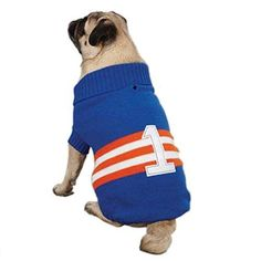 Zack & Zoey Acrylic Collegiate Dog Sweater Small/Medium 14-Inch Blue