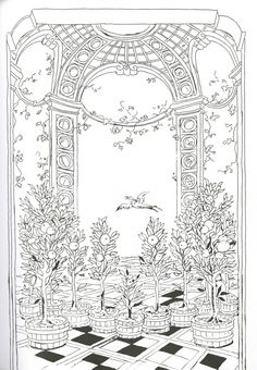 Pippa Rossi Lost Garden Adult Coloring Book Orange By On DeviantArt