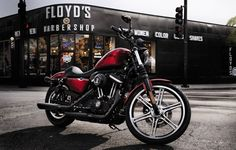 Turn heads on this blacked out bike. | 2012 Harley-Davidson Iron 883