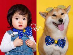橘子白,攝影,工作室,阿睿,全家福,寵物寫真,毛小孩,我與毛孩的全家福 Pet Photographer, Pets, Face, Faces, Facial
