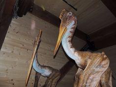 Ark Encounter (Williamstown, KY): Top Tips Before You Go - TripAdvisor