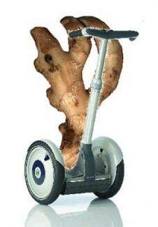 Neben Hagebuttenpulver mit dem wirksamen Glaktolipid GOPO (Studie 2007 Charite Berlin) ist es vor allem der Ingwer, in Asien seit Ewigkeiten als Gewürz und Heilmittel bekannt und derzeit durch viele Studien untersucht, ein wirksamer Schmerzlinderer und Funktionsverbesserer bei arthrotischen und rheumatischen Symptomen. Es stecken eine Vielzahl von ätherischen Ölen und Scharfstoffen wie den Gingerolen und Shoagolen, Vitamin C, Magnesium, Calcium, Kalium, Natrium und Phosphor mit…