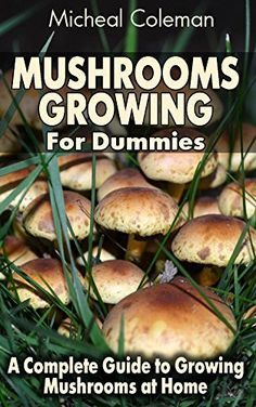 Growing Vegetables Mushrooms Growing For Dummies: A Complete Guide to Growing Mushrooms at Home: (Mushroom Farming, How to Grow Oyster Mushrooms, Edible Mushrooms) (Farming For Dummies, Gardening For Dummies Book Growing Mushrooms At Home, Garden Mushrooms, Edible Mushrooms, Stuffed Mushrooms, How To Grow Mushrooms, Growing Vegetables, Fruits And Vegetables, Veggies, Gardening Vegetables