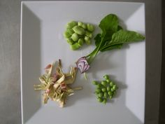 Locanda la Pieve Fresh spring organic vegetables for a nice, simply receipt