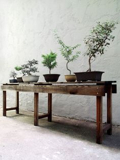 perfect bonsai table