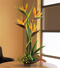 If you're looking for a touch of the tropics, this bird of paradise arrangement will heat up any home or office.Suggest a large card for your words to be hand written.  <> - $130.00 Available online for worldwide delivery at Brant Florist.