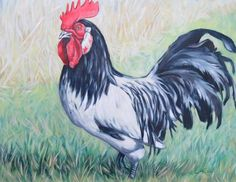 Anita Klein, Images of the West Canadian Artists, Handsome, Paintings, Canvas, Animals, Image, Tela, Animales, Paint
