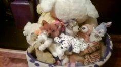 Basil, Teddy Bear, Decor, Decoration, Teddy Bears, Decorating, Deco