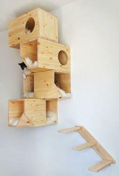 superbe maison pour chats ! A great idea