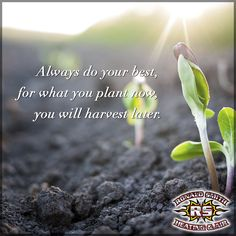 Always do your best; for what you plant now, you will harvest later. #RonaldSmithHeatingAndAir #WhatYouSowYouWillReap
