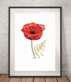 Flowers Watercolor Art Print- Title:  Red Poppy - Red Fine Art, Spring Flowers, Wall Art, Home Decor,Minimalism Art, Gifts online.