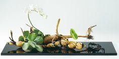Styles of Ohara School of Ikebana English Ikebana, Flower Arrangements, Wreaths, Art Floral, School, Flowers, Inspiration, Gardening, English