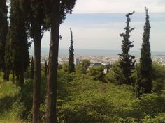 View of Thessaloniki from Hilia Dendra,the forest of Thessaloniki Thessaloniki, Capital City, Greek, Mountains, Sunset, Places, Travel, Outdoor, Sunsets
