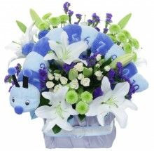 Bobby Baby flowers with a blue soft toy caterpillar http://www.flowersbytina.com.au/shoppingcart/products/bobby.html