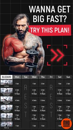 Muscle Building Workout Plan, Muscle Gain Workout, Workout Plan For Men, Gym Workout Tips, Body Workouts, Workout Plans, Wellness Fitness, Fitness Diet, Mens Fitness