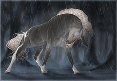 BRlS Blind wolf rain by BRls-love-is-MY-Live on deviantART