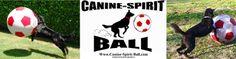 Canine-Spirit