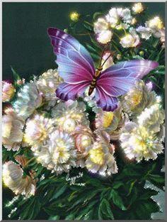 Pretty Butterfly - Butterflies Fan Art (41141211) - Fanpop