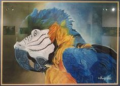 The Macaw by Margot Tidd