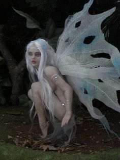 #Fairy #Fairies