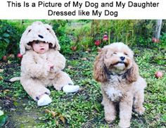 Things that make you go AWW! Like puppies, bunnies, babies, and so on. A place for really cute pictures and videos! Dog Pictures, Best Funny Pictures, Funny Photos, Cute Pictures, Funny Kids, Cute Kids, Baby Animals, Cute Animals, Puppies And Kitties