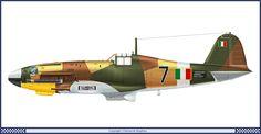 """Fiat G-55"""" Centauro"""" - 1 Squadriglia 2° Gruppo 1944  - Fiat G.55 """"Centauro"""" - Aereo da caccia diurno, monoposto, monomotore, da intercettazione e superiorità aerea. Lunghezza: 9,37 m Apertura alare 11,85 m Altezza3,13 m Superficie alare21,11m² Peso a vuoto2 630 kg Peso max al decollo3 720 kg Propulsione Motore: Fiat 1050 RC.58 Tifone 12 cilindri a V raffreddato a liquido Potenza1 475 CV Prestazioni Velocità max620 km/h a 7 400"""