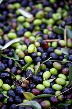 Food Art Photography Olive Oils 39 New Ideas Greek Potato Salads, Greek Potatoes, Orange Olive Oil Cake, Lemon Olive Oil, Fruit And Veg, Fruits And Vegetables, Olive Oil Brands, Olive Oils, Olive Oil Favors