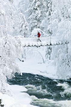 Winter Stroll | Winter Walk