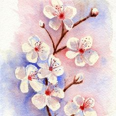 Cherry Blossoms–Watercolor Art Print