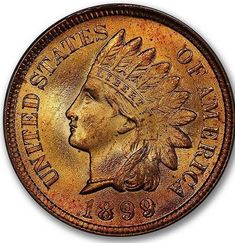 graded 1899 Indian Cent - Type 3 Bronze in an PCGS holder. Rare Coins, Half Dollar, Larry, Type 3, Auction, Bronze, Indian