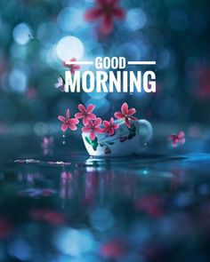 Good Morning Coffee Gif, Good Morning Monday Images, Good Morning Massage, Good Morning Photos Download, Happy Morning Quotes, Special Good Morning, Latest Good Morning, Good Morning My Friend, Good Morning Inspirational Quotes