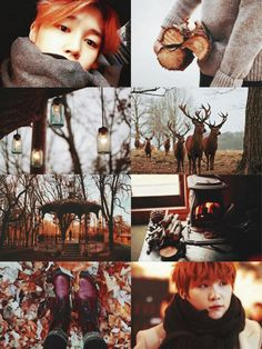 ☁️「bts seasons!au」Autumn Leaves