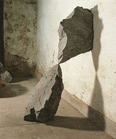 // Andy Goldsworthy