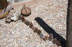 """Investigating shadows. """"Young children ask many questions to make sense of the world and their place in it. Their curiosity and natural sense of wonder drive them to explore and investigate the answers to their questions.""""  Lisa Daly and Miriam Beloglovsky - Loose Parts: Inspiring Play in Young Children."""