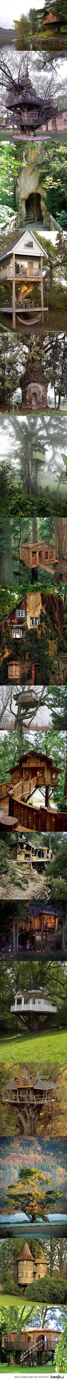 Tree houses.  Pretty sure the second one is here in Minneapolis.