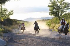 Holiday Company, Dude/Guest Ranch, Ranch Resort, Ranch with Winter Snow Activities, Hotel for Horsemen in Tombstone/Arizona