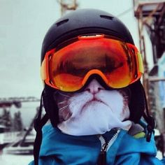 Animal_Ski_Masks_by_Russian_Tattoo_Model_Teya_Salat_2015_07